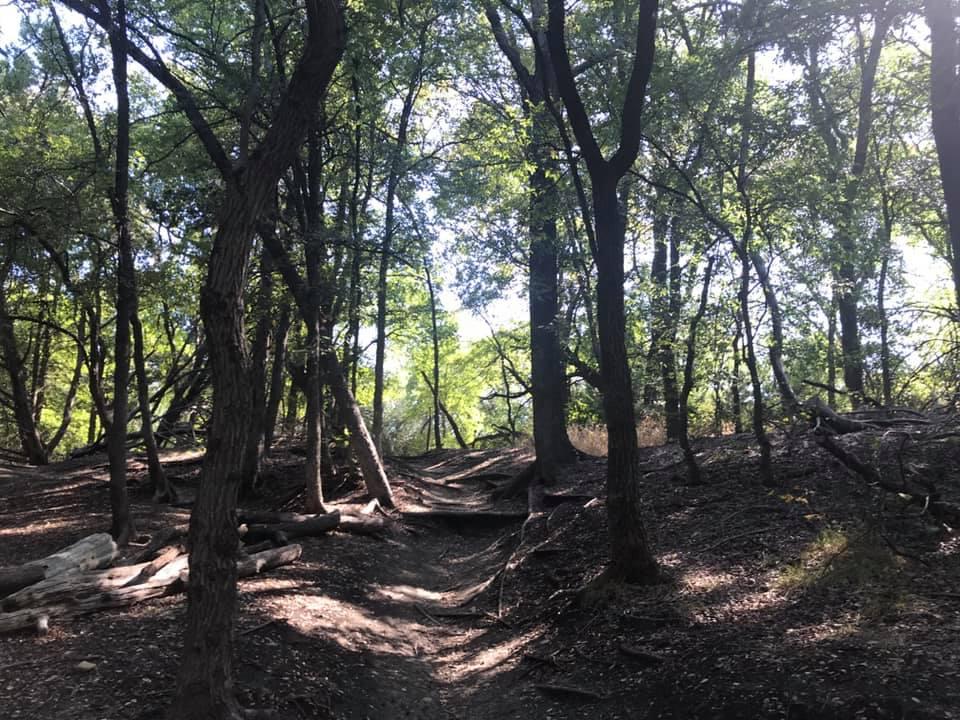 Cedar Hill State Park DORBA Trails
